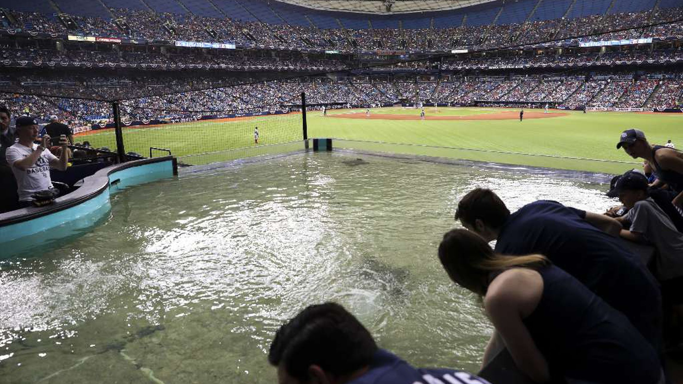 rays close the upper deck at tropicana field shrinking baseball s smallest seating capacity rays close the upper deck at tropicana