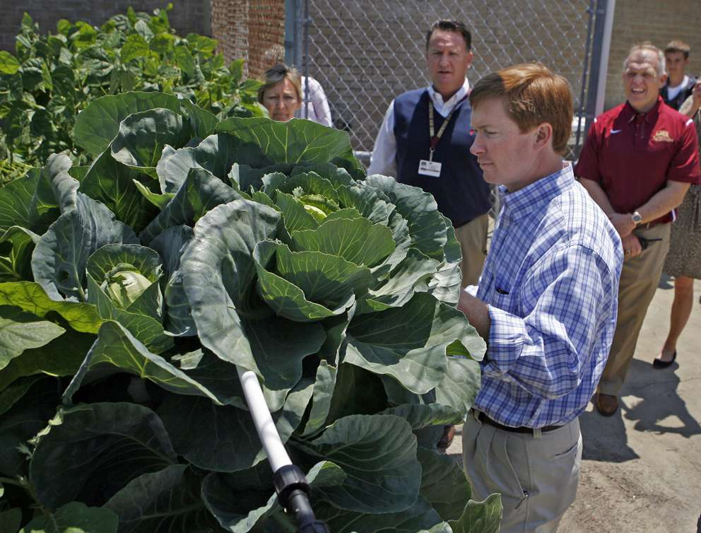 Florida Agriculture Commissioner Adam Putnam examines hydroponically grown vegetables at Countryside High School. [JIM DAMASKE, Times]