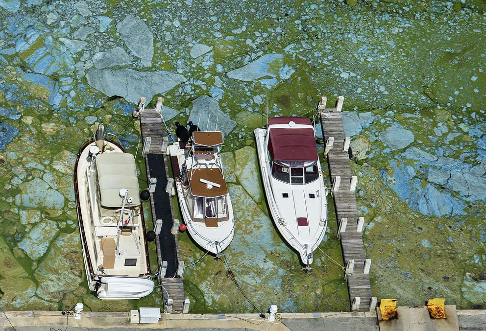 Boats docked at Central Marine in Stuart.[Greg Lovett | the Palm Beach Post via the Associated Press (2016)]