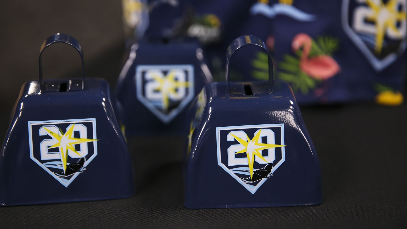 20 Ways The Rays Will Commemorate Their 20th Anniversary