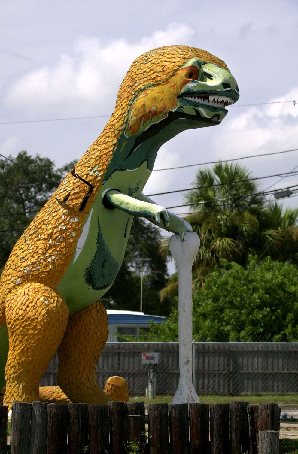 Dino, the concrete dinosaur that once stood by the side of 66th Street North in St. Petersburg. Times (2002)