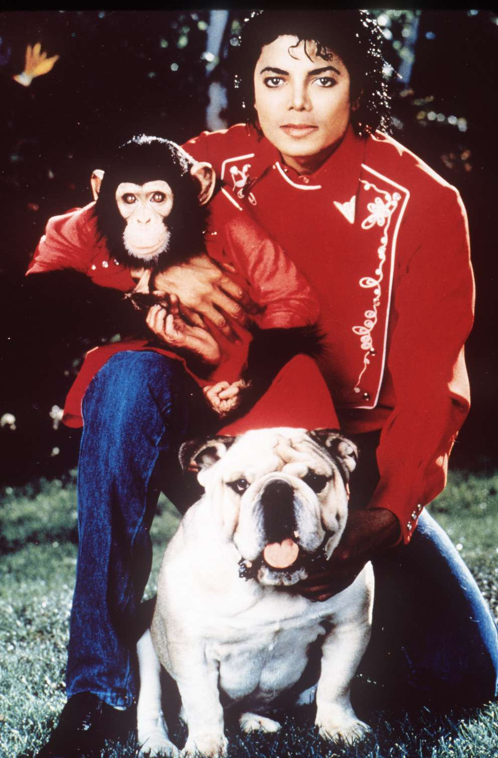 Michael Jackson is seen in this undated photo with his pet chimp Bubbles and a bulldog. [AP]