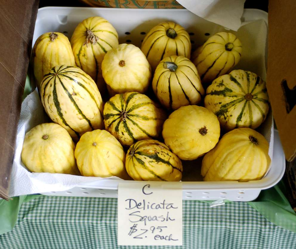 Organic squash is just a sample of the types of produce that can be purchased through a co-op system at Cheyenne's Country Thangs.