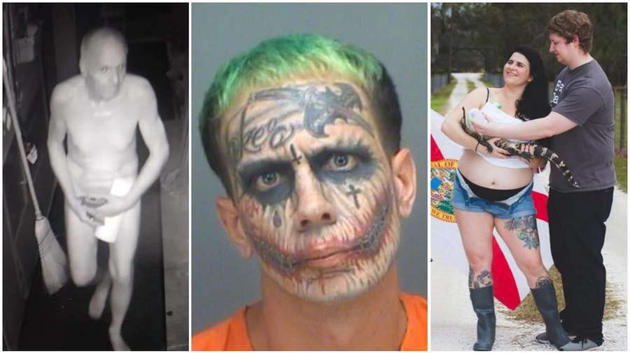 Images from some of our most widely shared Florida stories: the man who  broke into the Chattaway to eat soup and play the bongos naked, Miami's ' Florida ...