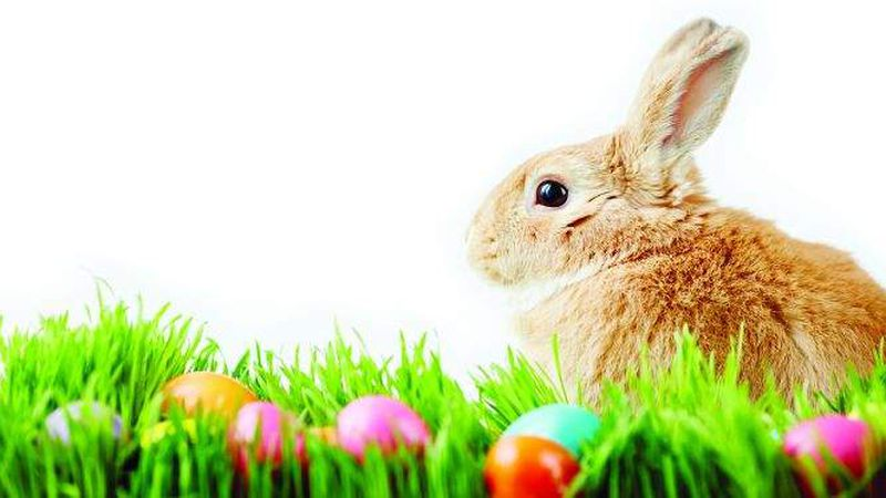 There's still plenty to do for Easter, at a distance and online