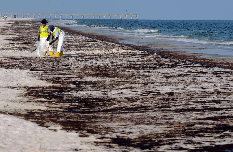 deepwater horizon oil spill didn t really hurt florida pro drilling
