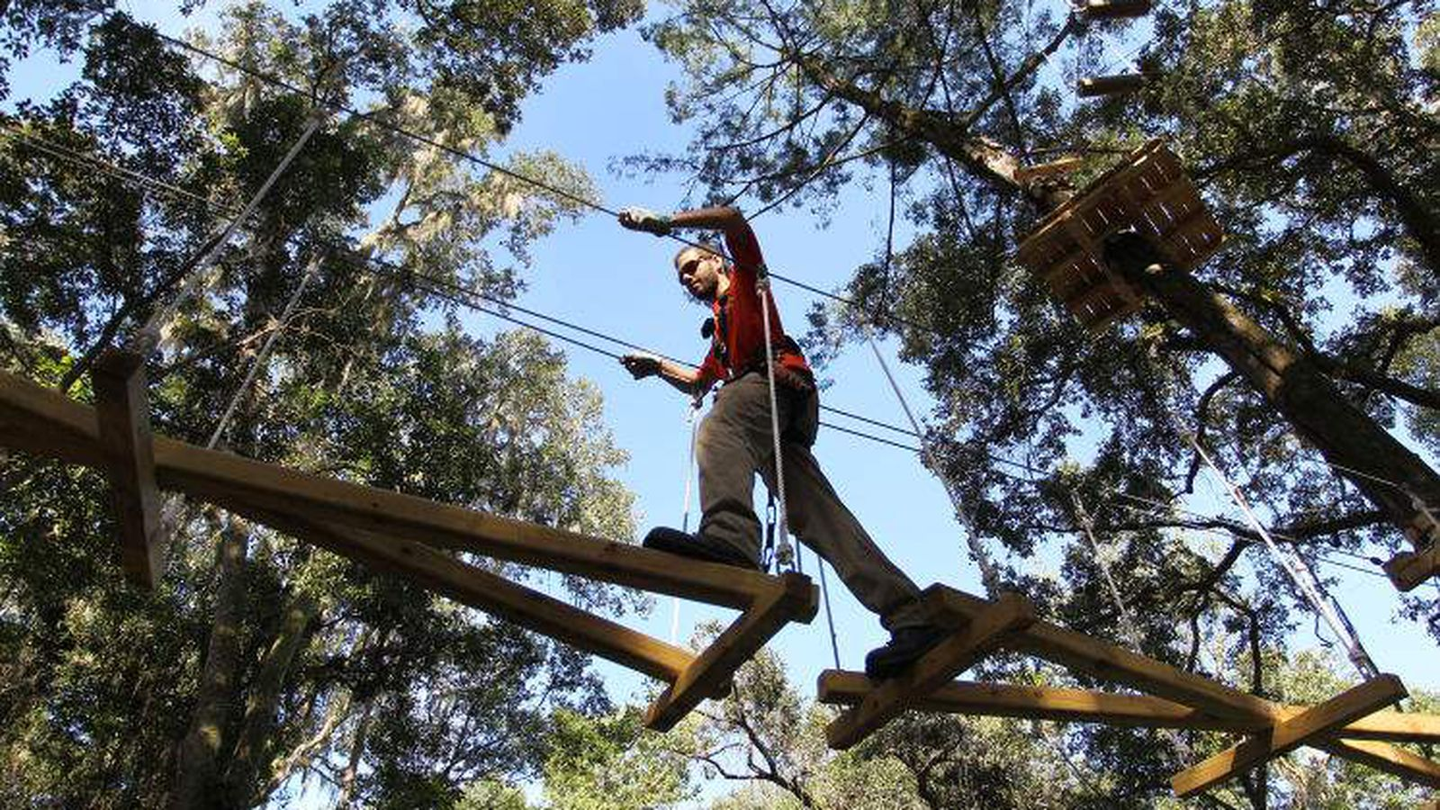 Treehoppers Aerial Adventure Park Opens Near Dade City