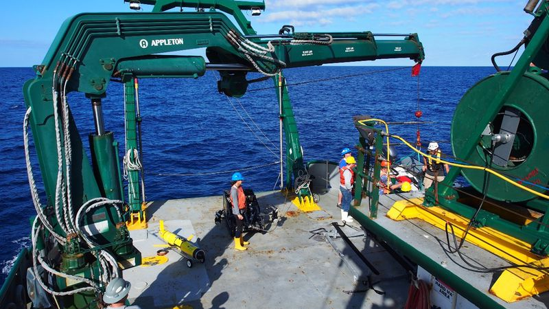 New center at USF College of Marine Science will help explore ocean floors