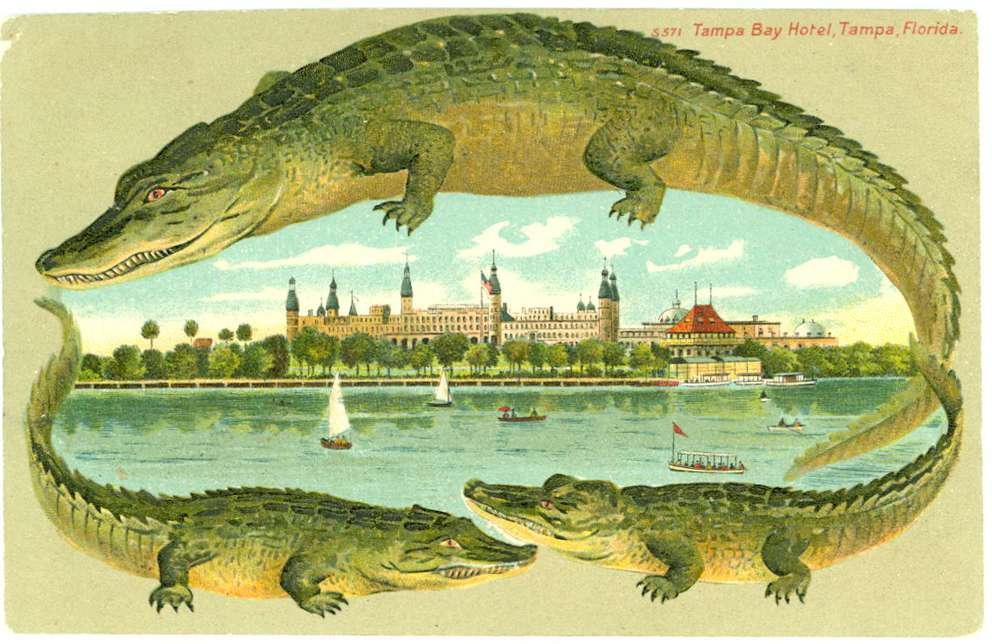 Early 1900s color postcard of the Tampa Bay Hotel. Photo provided by the Henry B. Plant Museum.