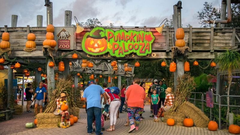 Free Halloween Events Near Citrus 2020 Tampa Bay Halloween parties, haunted houses and events this week