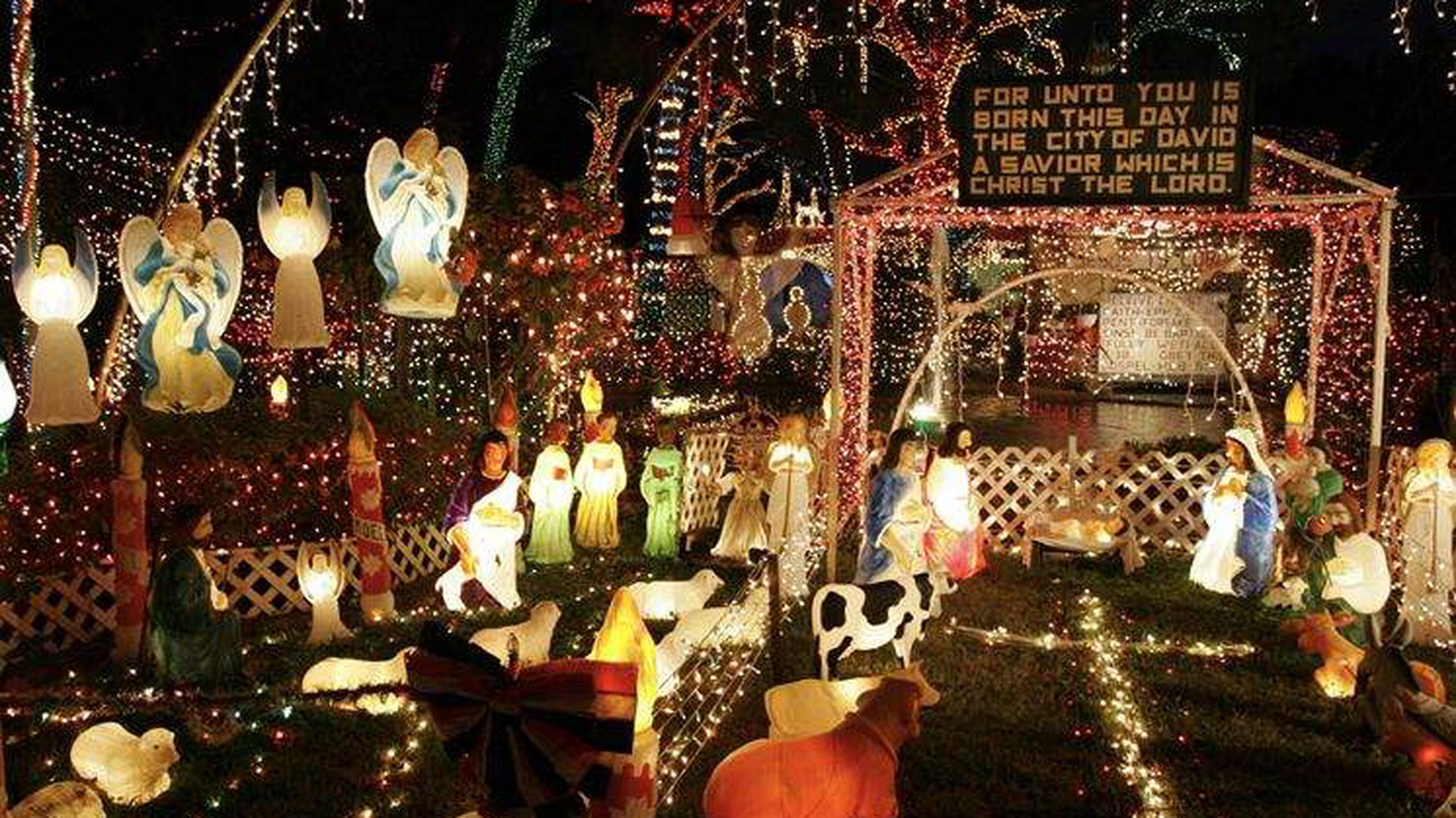 Christmas Lights In Tampa Florida 2021 Where To Find Christmas Lights In Tampa Bay