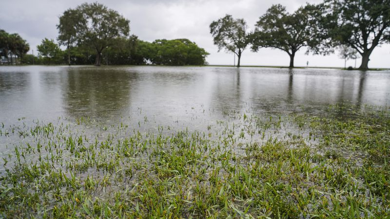 How Tampa Bay can protect against sea level rise | Column