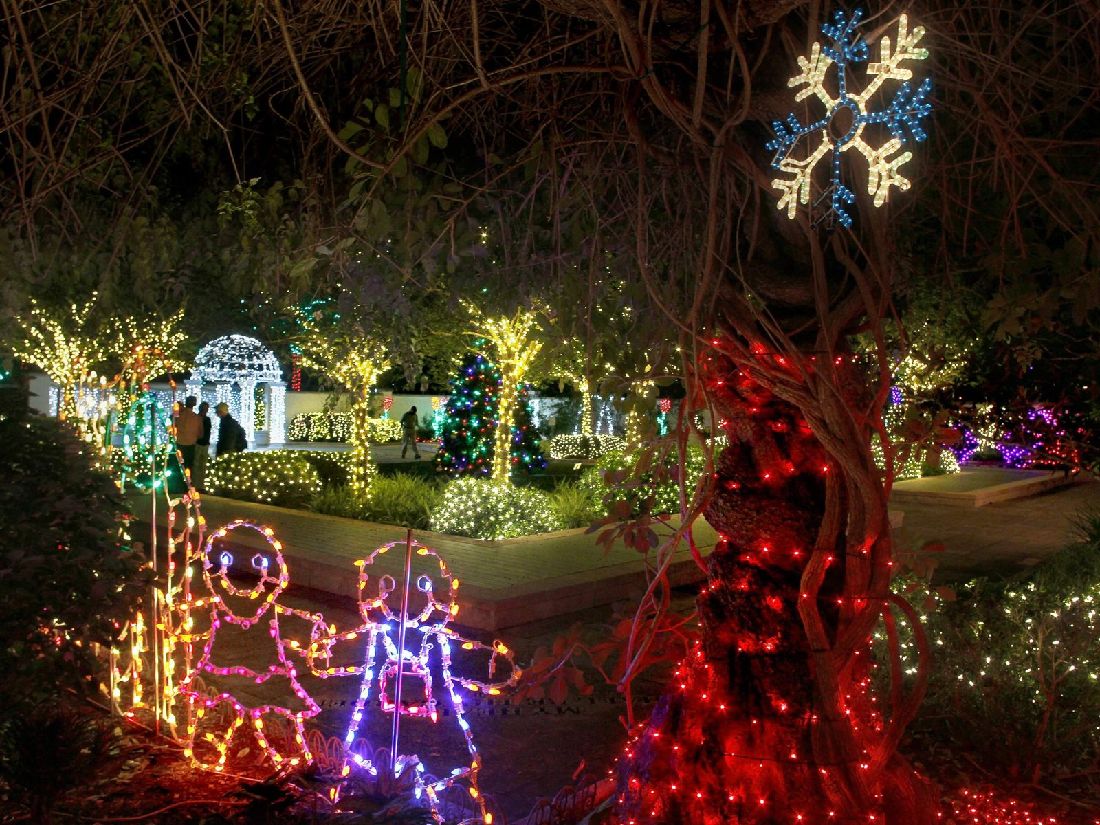 Where To See Christmas Lights In Tampa Bay