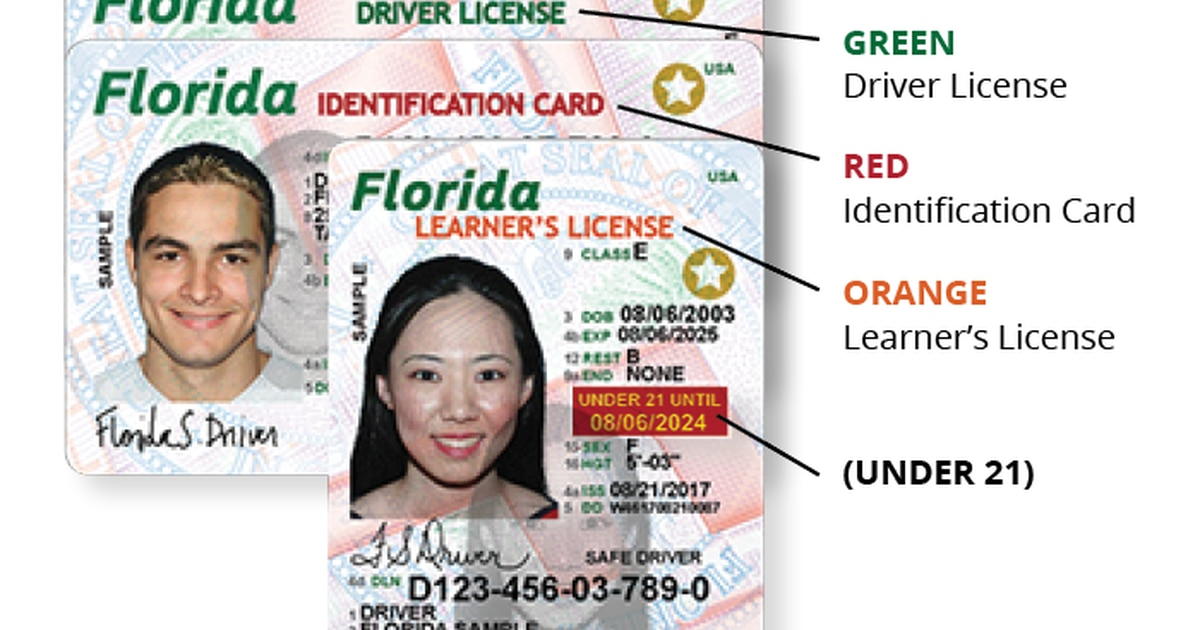How To Get A Florida Drivers License >> As Puerto Rico evacuees get new Florida licenses, there's ...