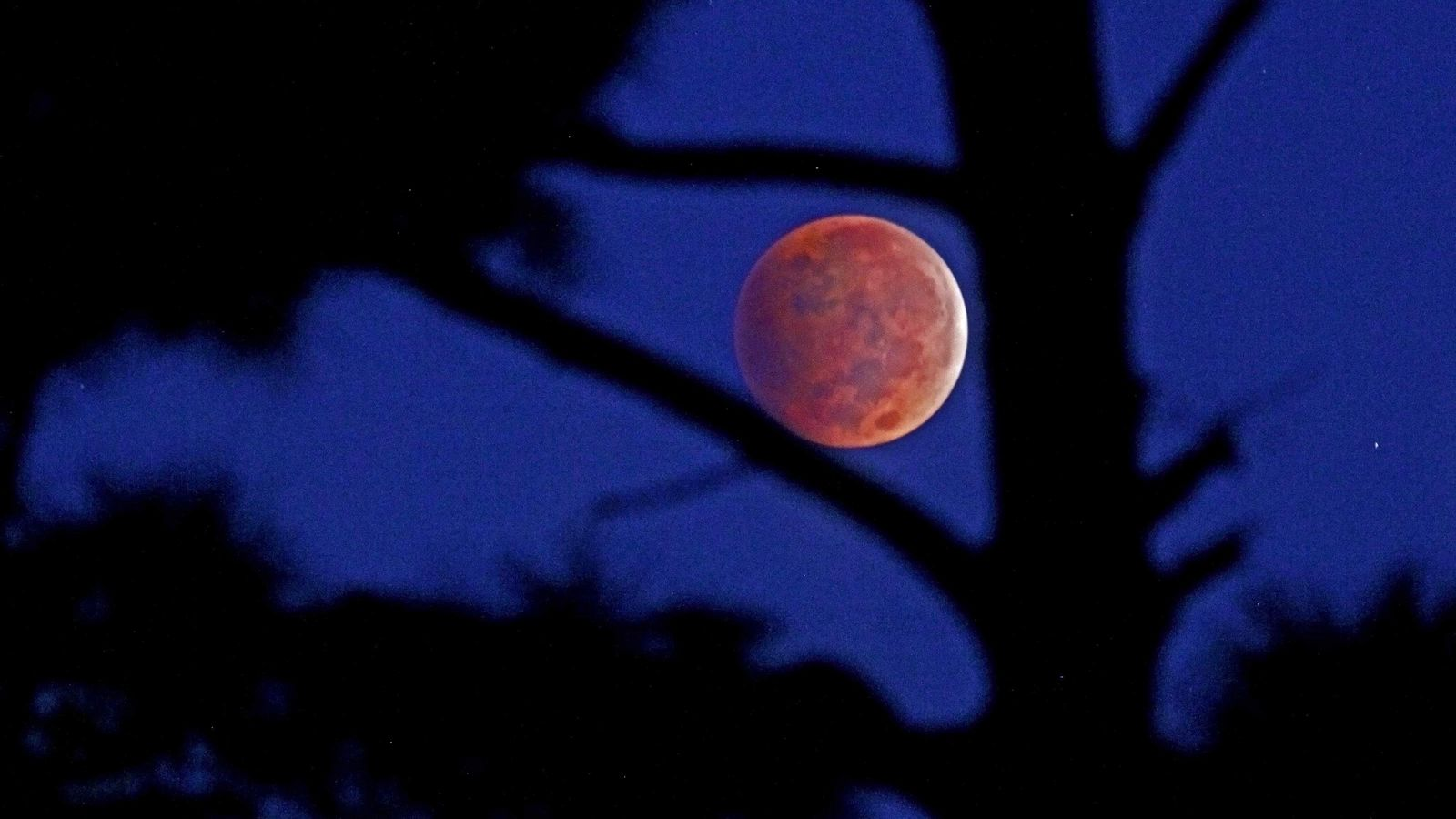 Century S Longest Blood Moon To Arrive Friday Here S Why Tampa Bay Won T See It