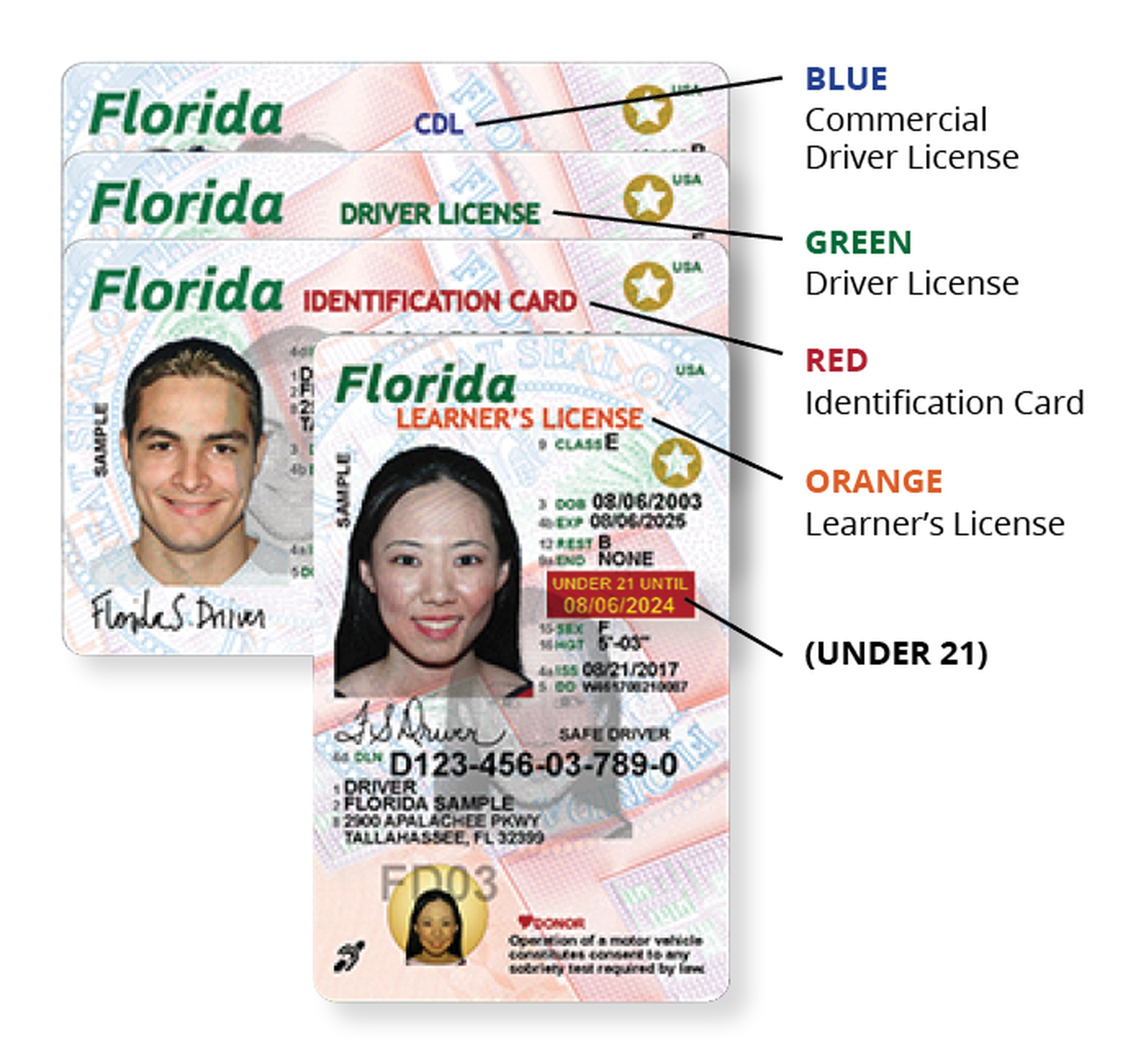 Florida Learners Permit >> As Puerto Rico Evacuees Get New Florida Licenses There S A