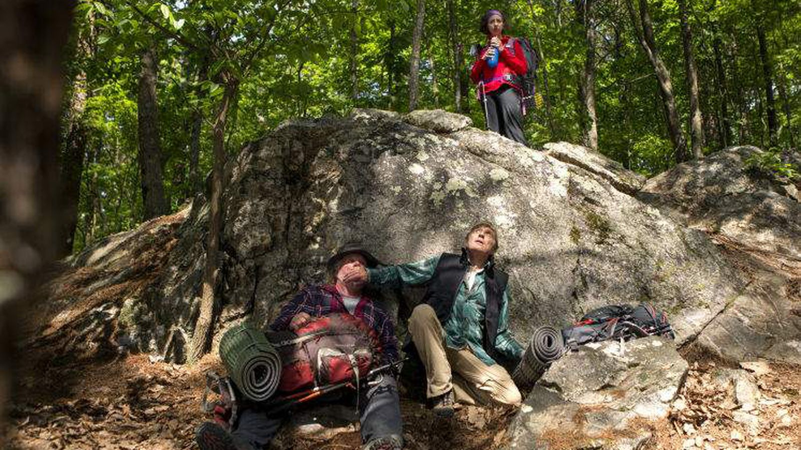 Review A Walk In The Woods Has Charming Stars And That S About It