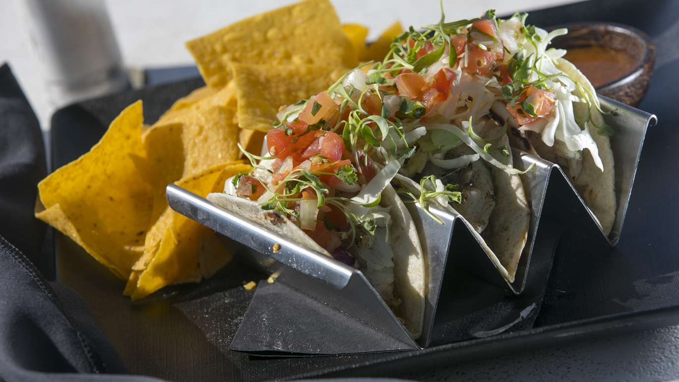 CHRIS URSO   Times A plate of sea trout tacos is seen served with cabbage, cilantro, along with house made salsa and chips Friday, April 27, 2018 at WTR Pool & Grill in Tampa. The Godrey Hotel and Cabanas in Tampa The Godrey Hotel and Cabanas Tampa offers unique fishing charters which provides a chance to catch, cook and eat local fish.