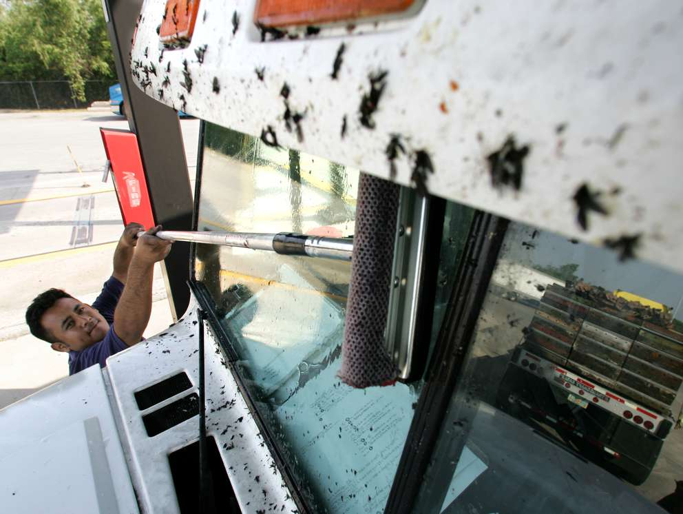 Truck driver Jesus Gomez of El Paso, Texas, cleans dead love bugs off his windshield at a truck stop. AP (2005)