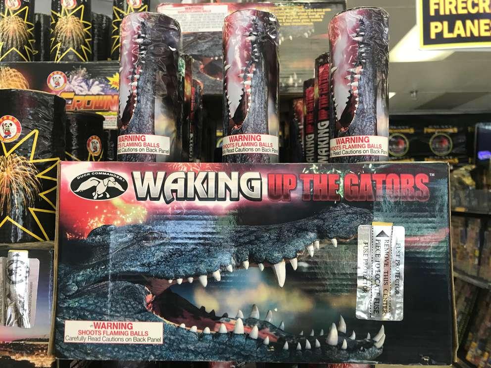 Waking Up the Gators