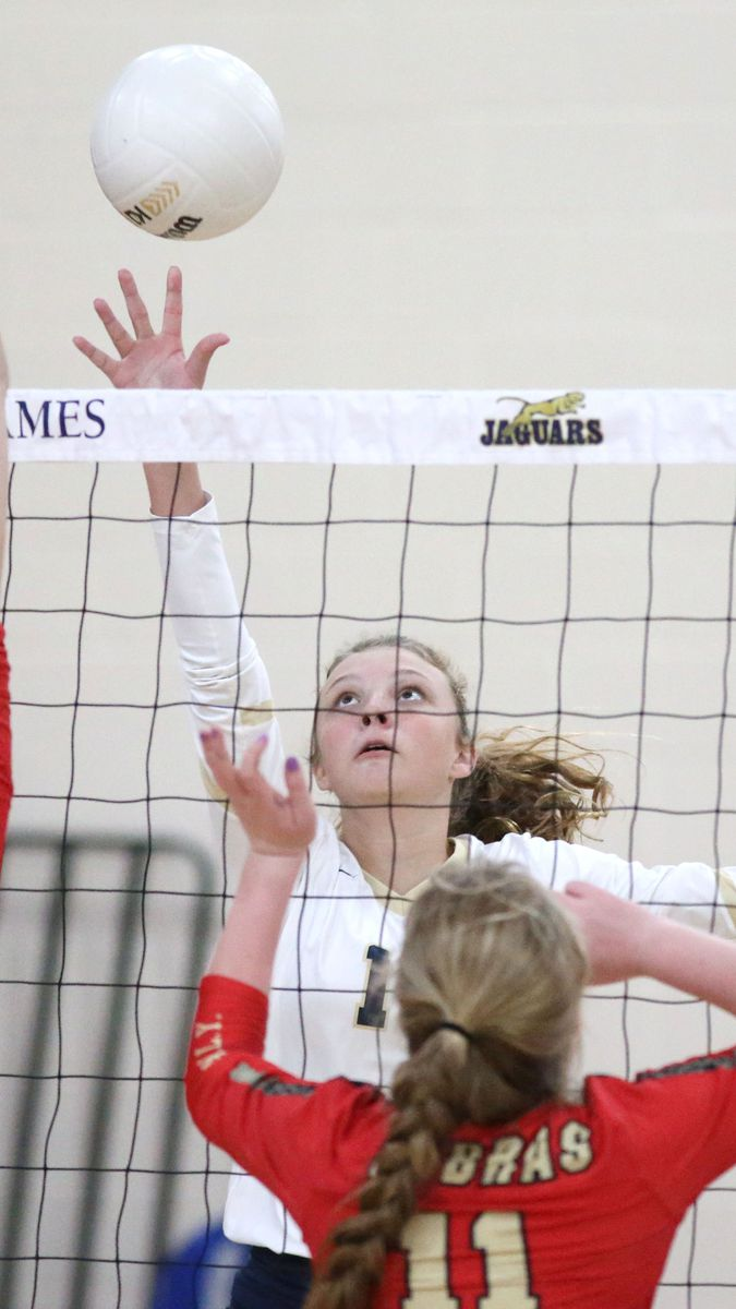 A Closer Looks At Tuesday S Region Volleyball Finals For Tampa Bay