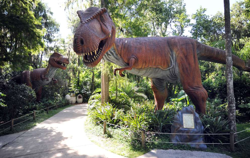 A Tyranosaurus Rex at Dinosaur world in 2015. Photo by Jim Reed.