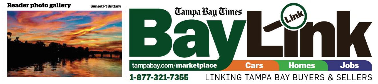 baylink logo